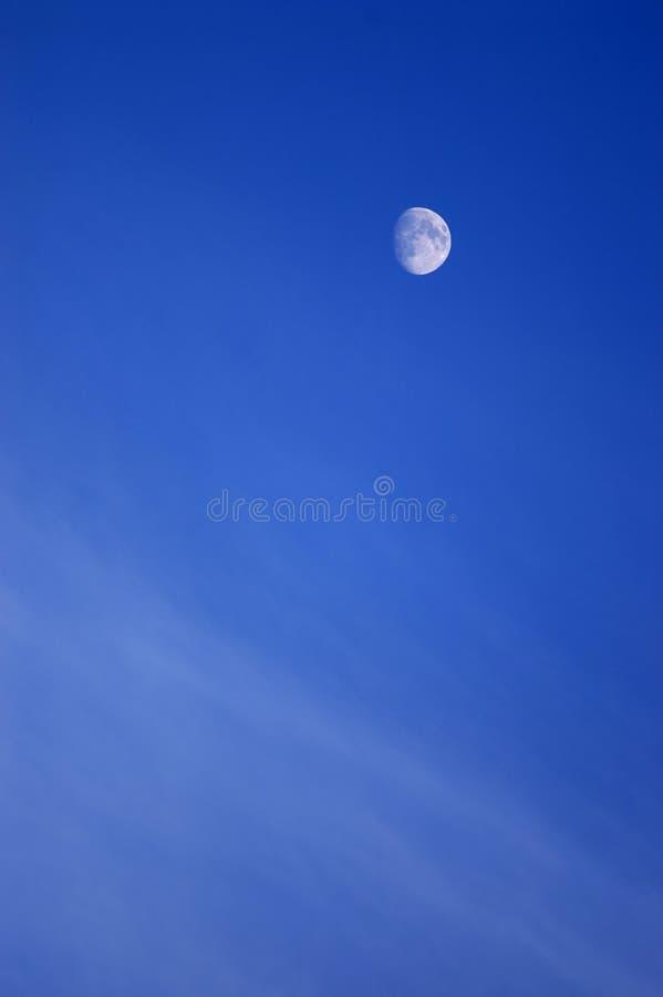 sky för blå moon royaltyfri foto