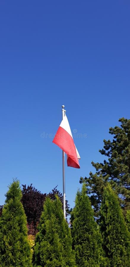 Sky, Flag, Tree, Daytime stock photos