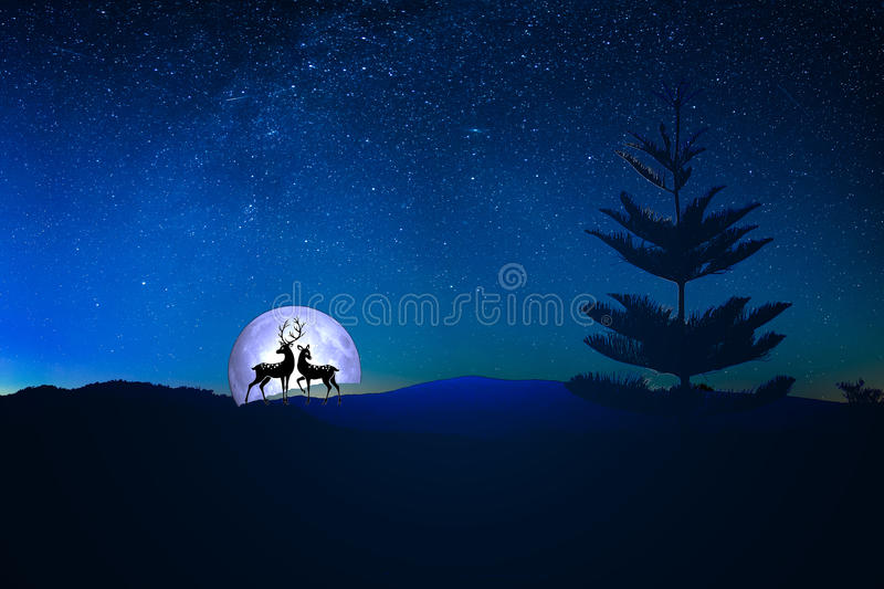Sky full of stars. A moonlight sky with fern tree in the foreground depicting love deers