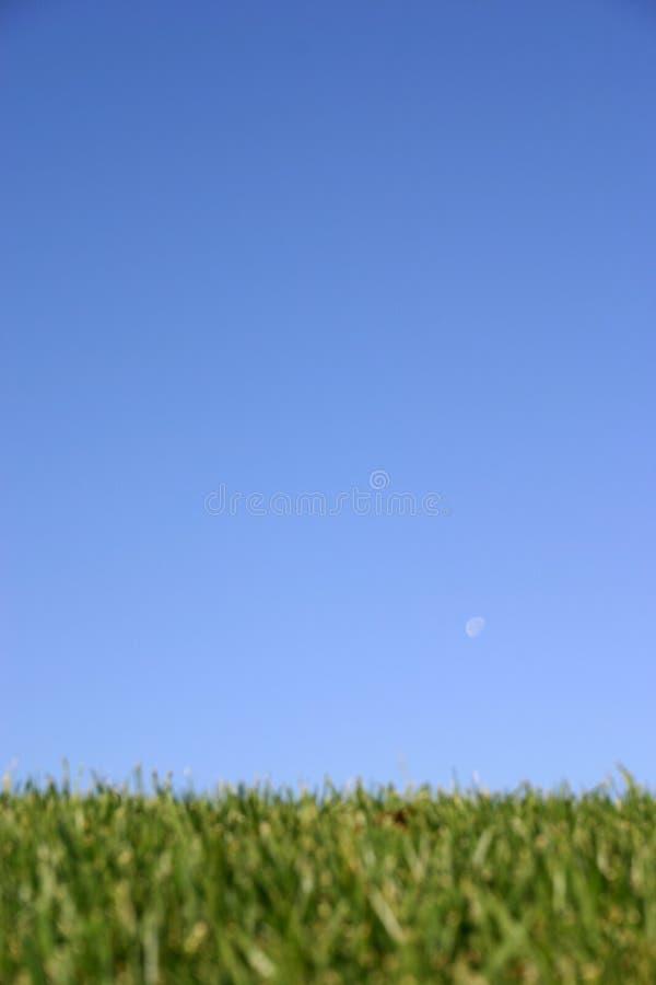 Sky Grass stock photos
