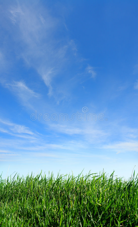 Sky and grass stock photo