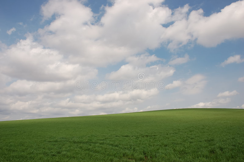 Sky and grass. Cloudy sky under green grass hill royalty free stock images