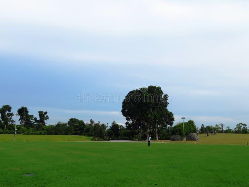Sky, Grassland, Field, Pasture Free Public Domain Cc0 Image