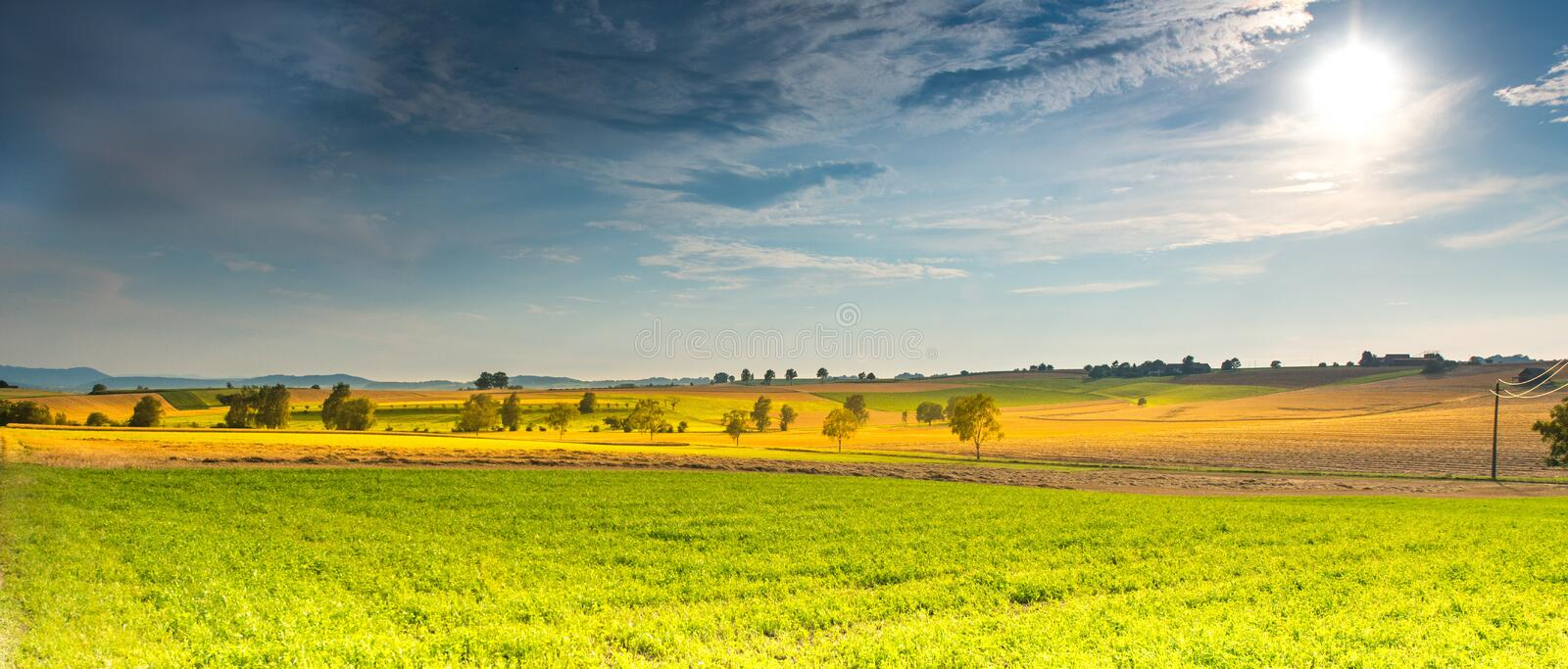 Sky, Grassland, Field, Yellow royalty free stock photos