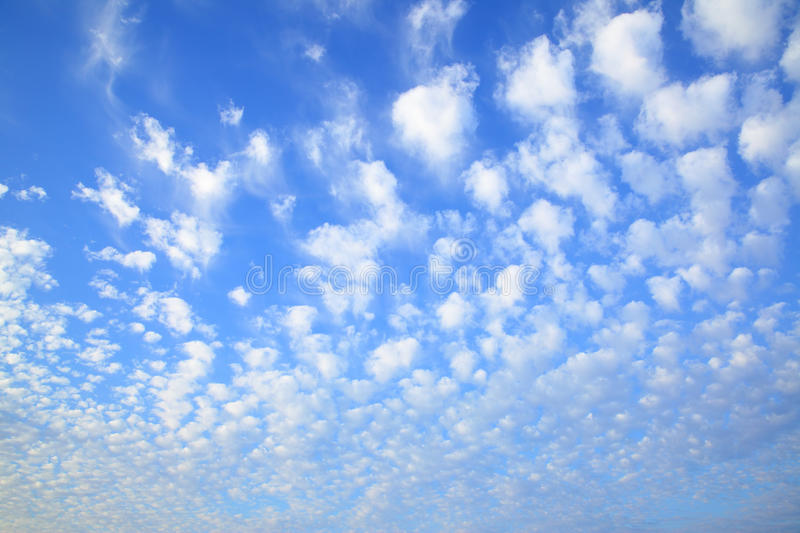 Sky with lots small clouds. Evening sky with lots small clouds - natural background stock photo