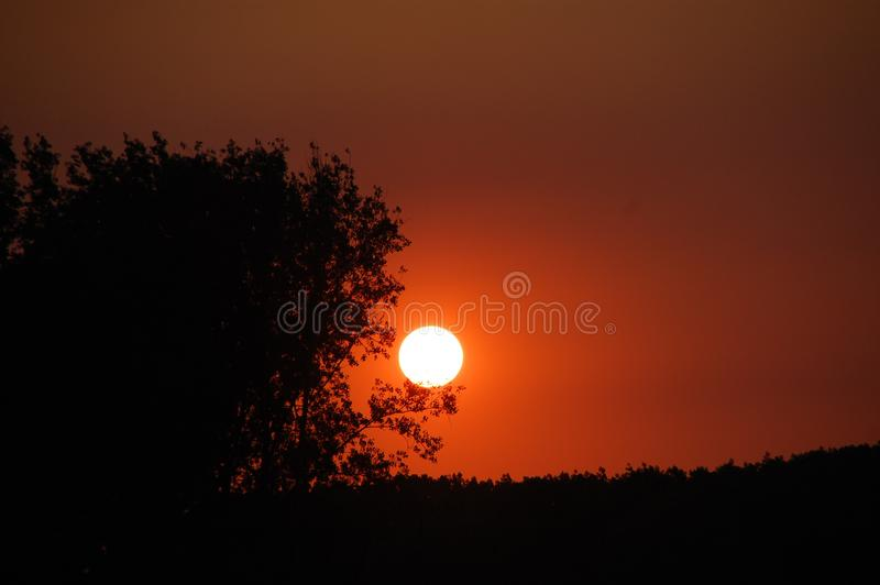 Sky, Nature, Sun, Atmosphere royalty free stock images