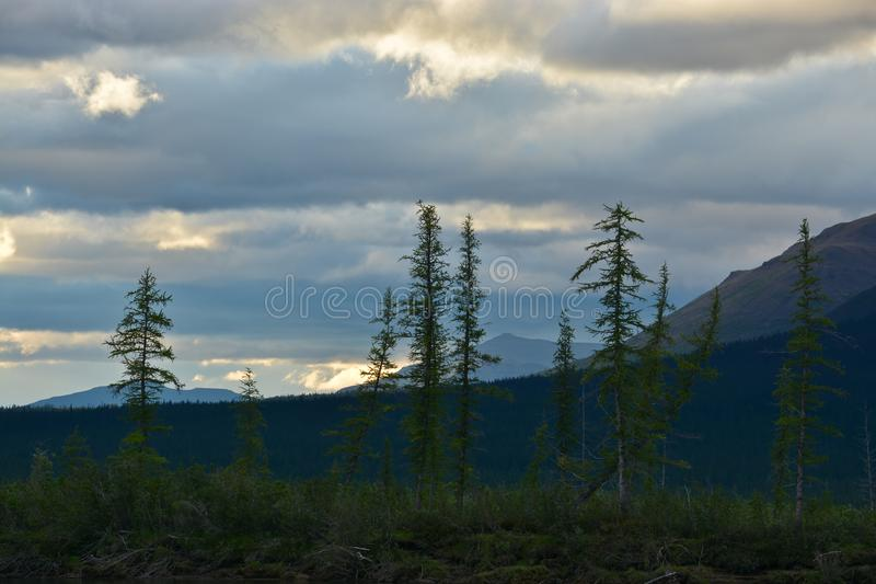 The sky is overcast. royalty free stock photography