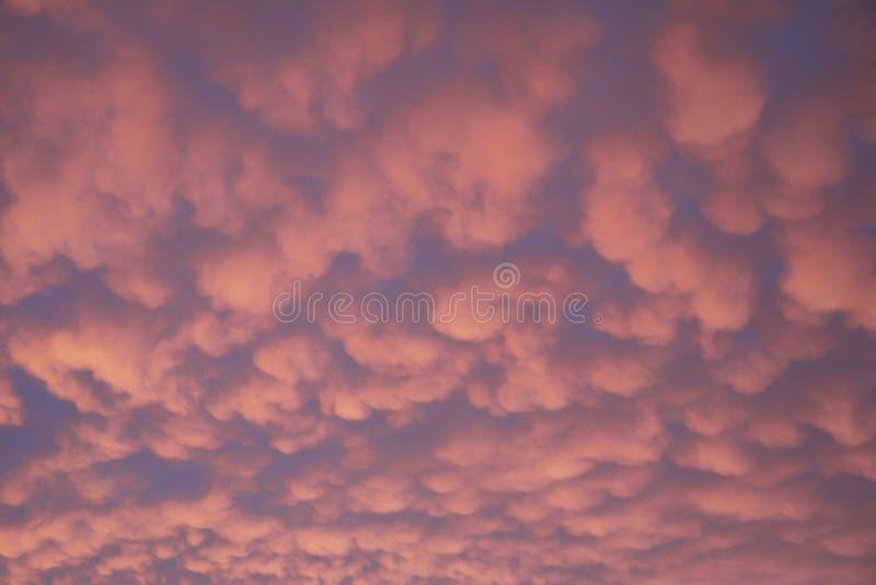 Sky: pink blue sunset clouds Australia stock photo