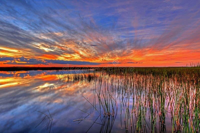 Sky, Reflection, Horizon, Wetland royalty free stock images