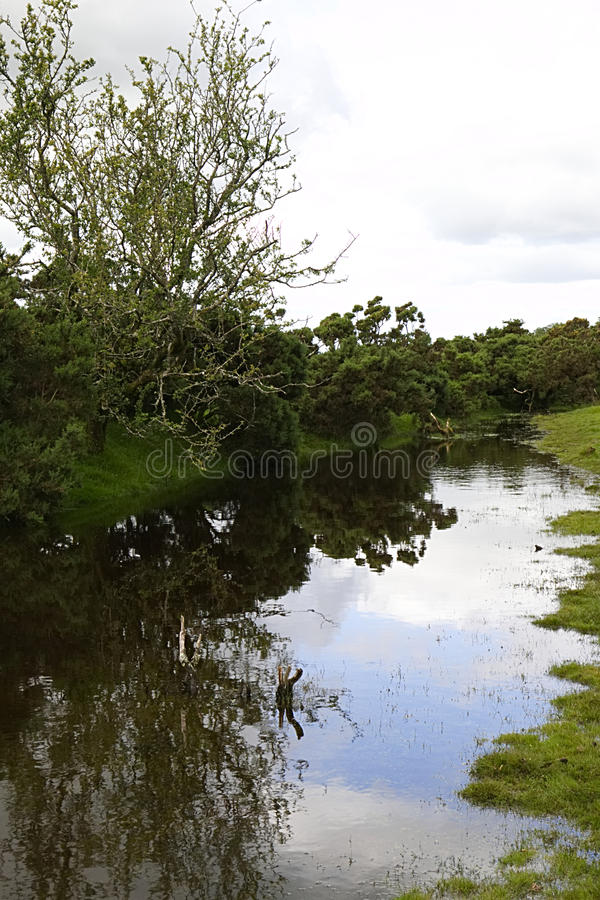 Sky reflection in water on Dartmoor. Sky reflection in large pool of water on Dartmoor national park royalty free stock photos