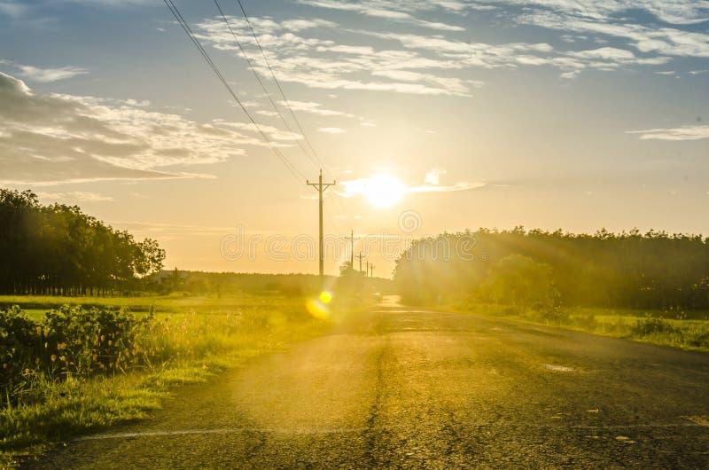 Sky, Road, Field, Yellow stock photo