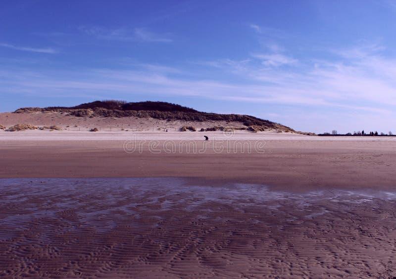 Sky, Sea, Horizon, Beach royalty free stock images