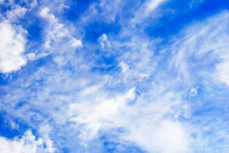 Sky squash-1 royalty free stock photography