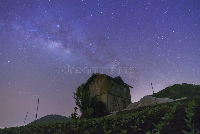 Sky with stars milky way galaxy over the mountain. At Cameron Highland, Malaysia stock photos
