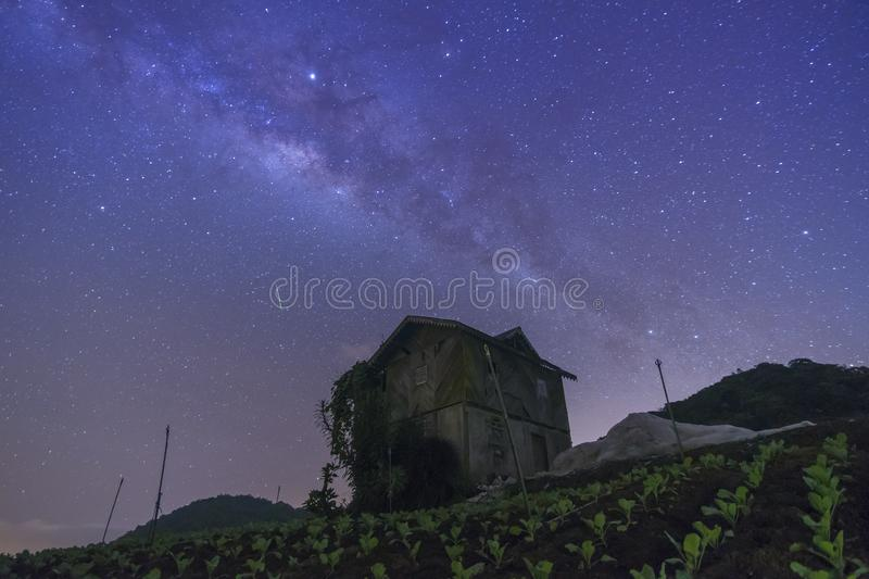 Sky with stars milky way galaxy over the mountain. At Cameron Highland, Malaysia royalty free stock image