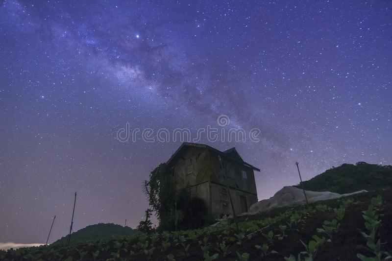 Sky with stars milky way galaxy over the mountain. At Cameron Highland, Malaysia royalty free stock photo