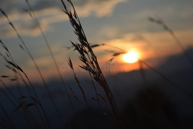 Sky, Sun, Atmosphere, Morning Free Public Domain Cc0 Image