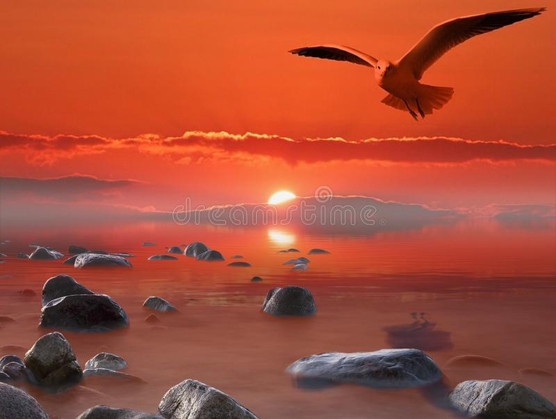 Sky, Sunrise, Shore, Sea Free Public Domain Cc0 Image