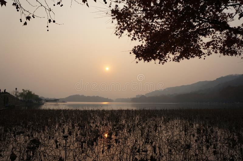 Sky, Sunrise, Tree, Morning stock photos
