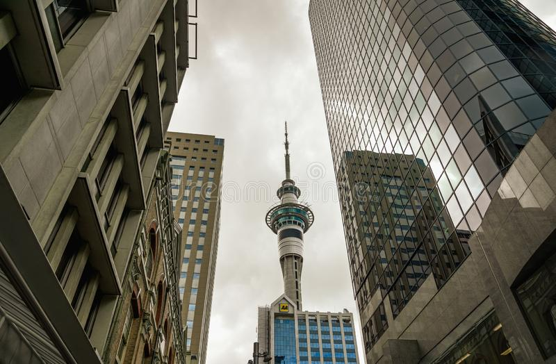 Sky Tower, Auckland Nueva Zelanda imagen de archivo