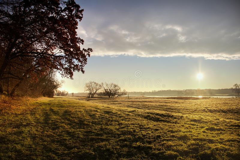 Sky, Tree, Field, Morning royalty free stock images