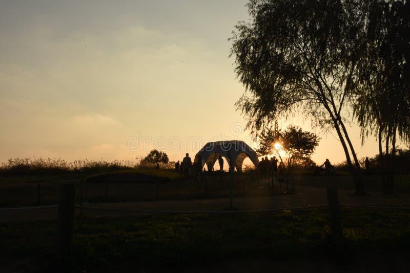 Sky, Tree, Morning, Sunrise royalty free stock photo