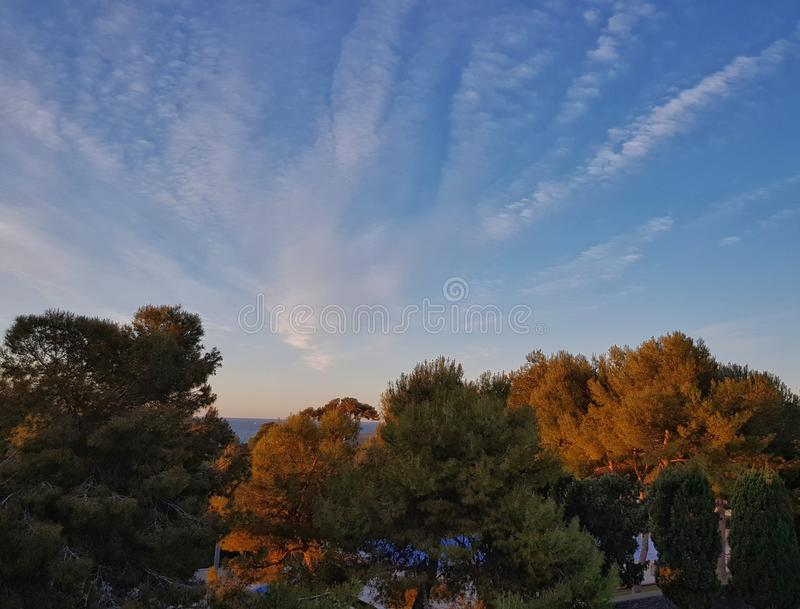 Sky and trees royalty free stock photography