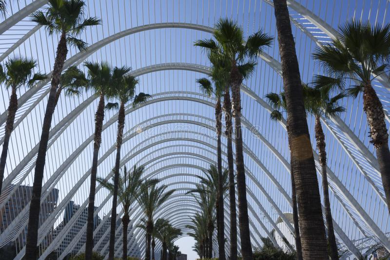 The sky through the Umbracle in Valencia. royalty free stock photo