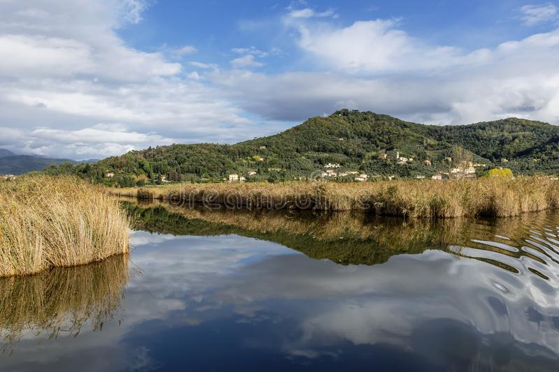 The sky and the village of Massaciuccoli are reflected in the waters of the homonymous lake, Lucca, Italy. Europe stock image
