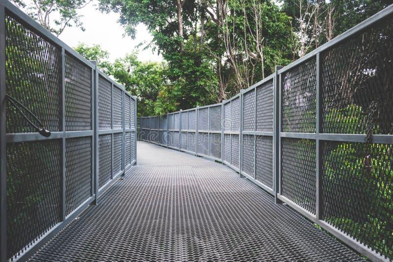 Sky walk in forest,metal fence bridge, walk way. Chiangmai, Thailand stock photos