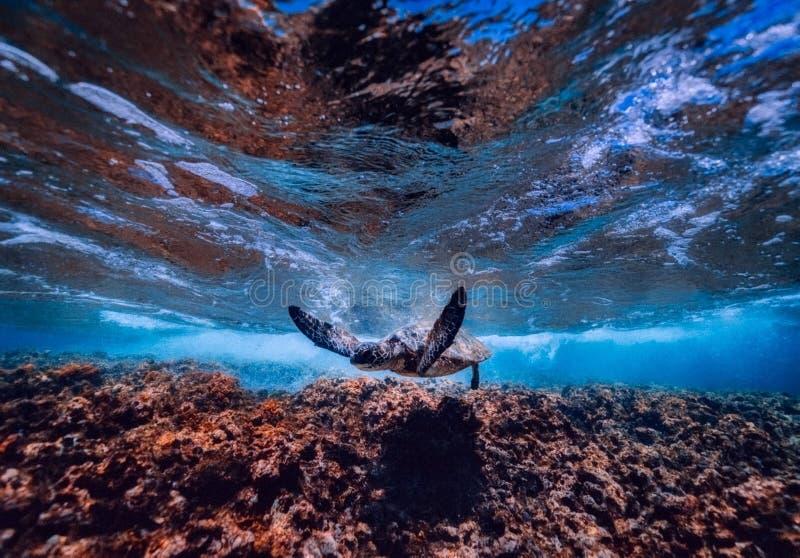 Sky, Water, Rock, Earth stock image