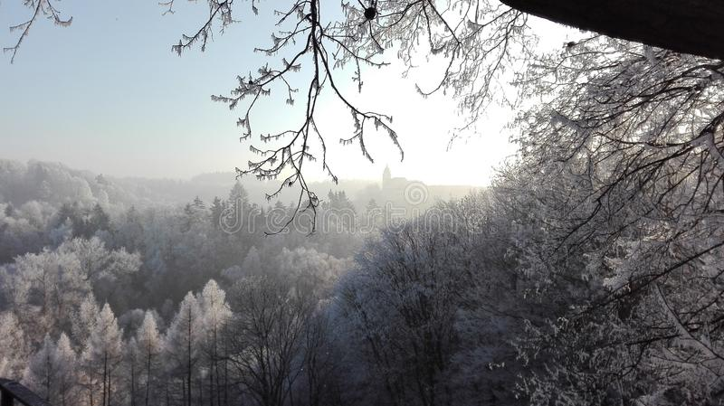Sky, Winter, Tree, Frost royalty free stock images