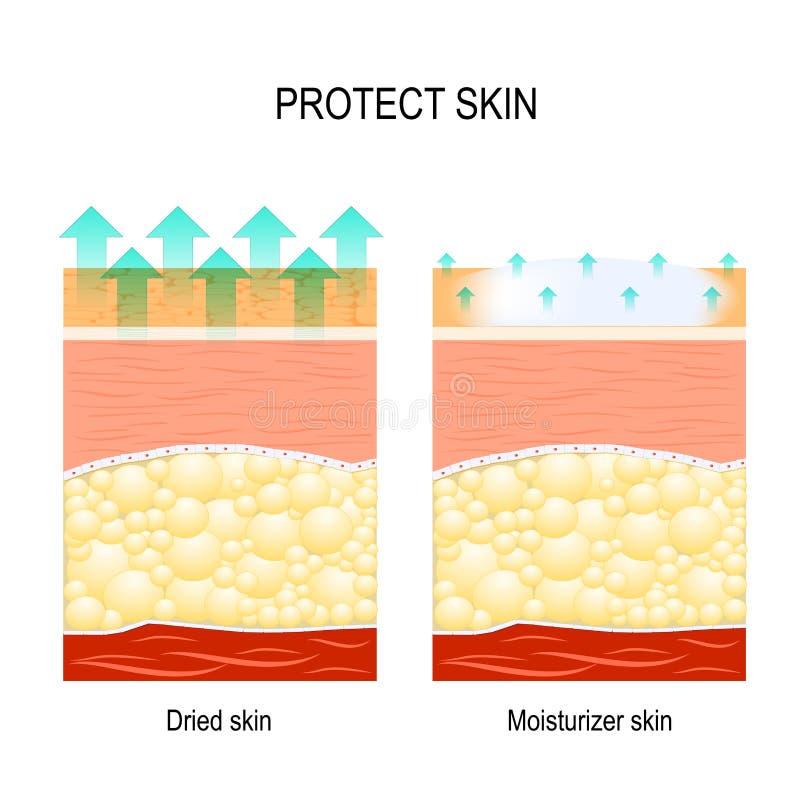 Skydda känslig hud royaltyfri illustrationer