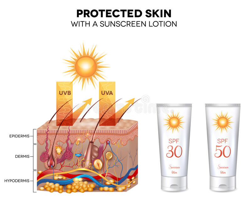 Skyddad hud med en sunscreenlotion stock illustrationer