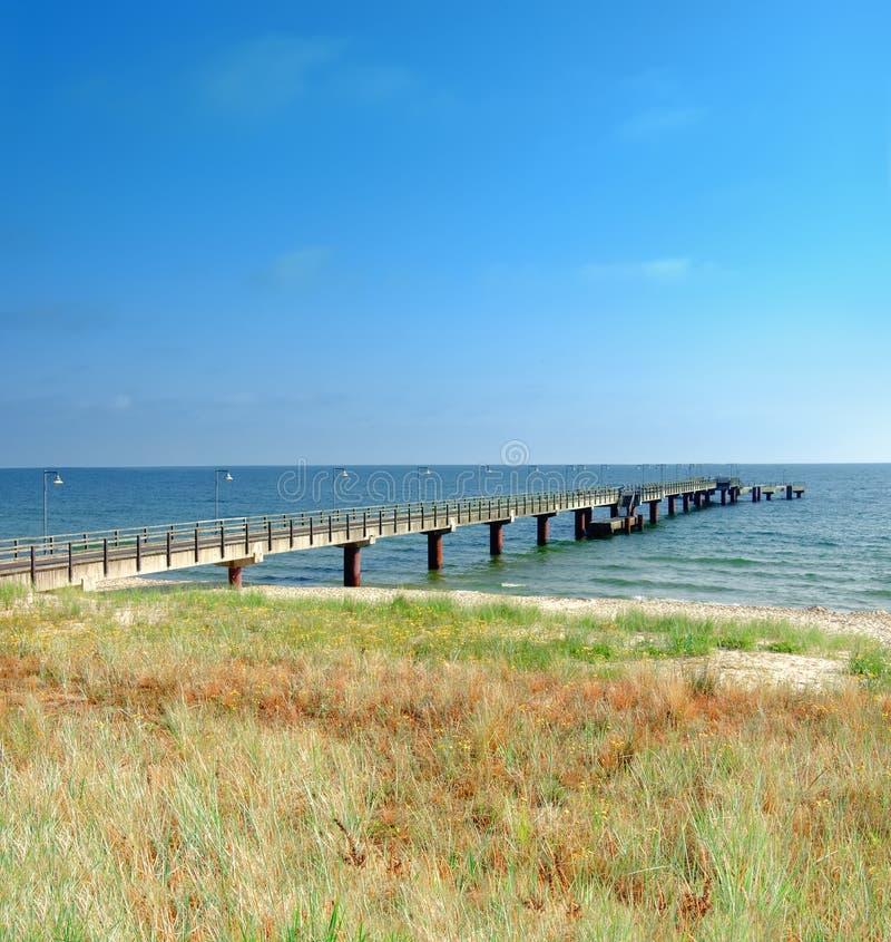Skyddande stränder för gräsinnehavsand av det baltiska havet royaltyfria bilder