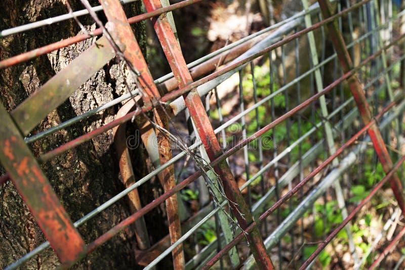 Skyddsgallrar, staket och stålrör lutade mot ett träd royaltyfri fotografi