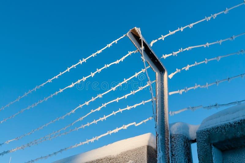 Skyddsområdet fäktas med taggtråd royaltyfri bild