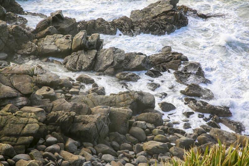 Skyddsremsor på en stenig kustlinje i Westport, Nya Zeeland arkivbilder
