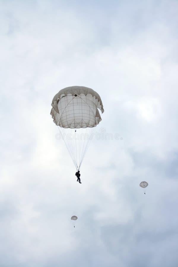 Skydiver royalty-vrije stock foto