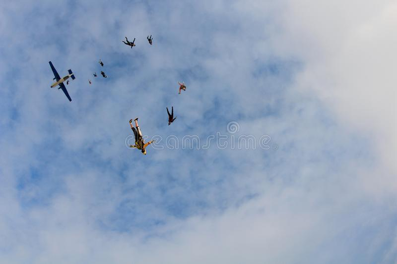 Skydiver are flying in the sky like a flock of birds. Skydivers are flying in the sky. They are look like a flock of birds in the sky royalty free stock photo