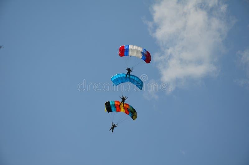 3 skydivers в воздухе стоковое фото