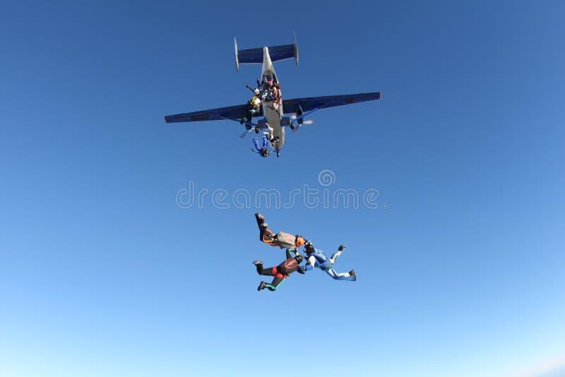 Skydivers образования скачут из самолета стоковое изображение rf