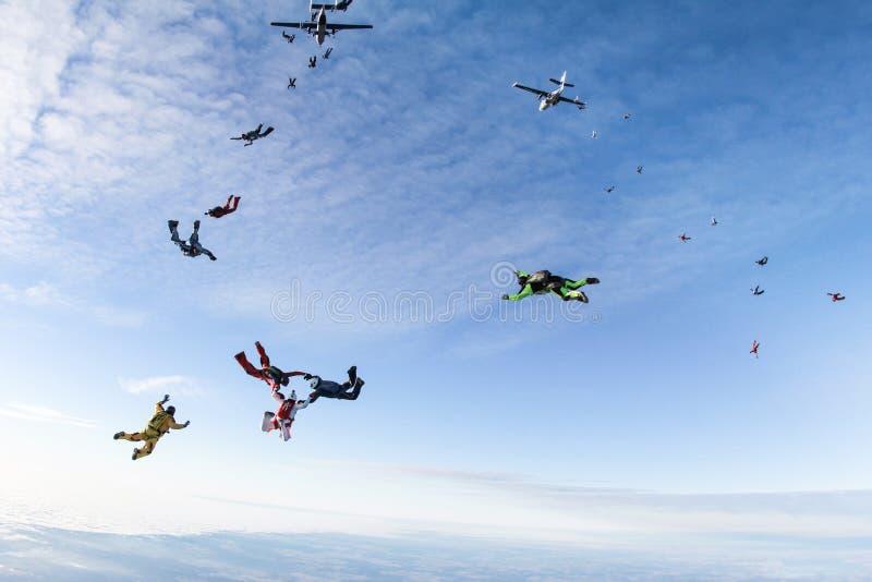 Skydivers скакали из 2 самолетов стоковое изображение rf