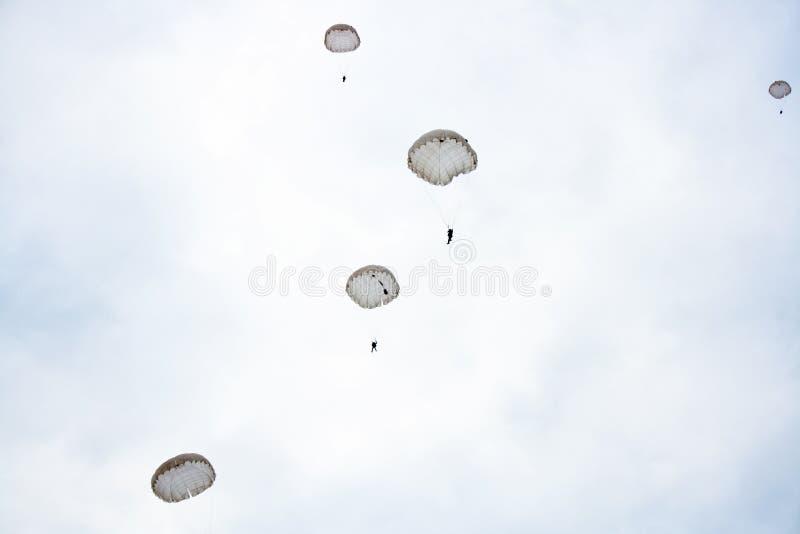 Skydivers royalty-vrije stock foto