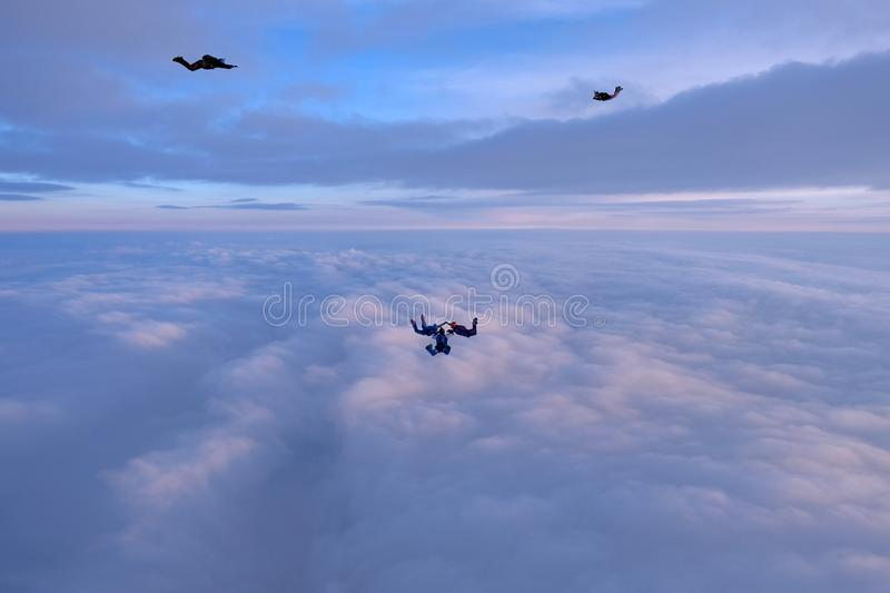 Skydivers are faling above pink clouds in the sunset sky. A group of skydivers is in the sky. They are falling above pink sunset clouds royalty free stock photos