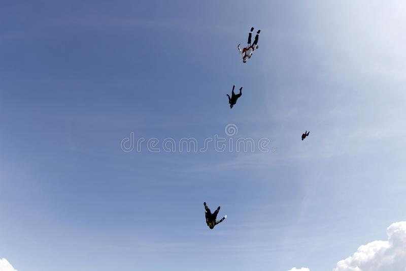 Skydivers are fast falling in the blue sky. stock image