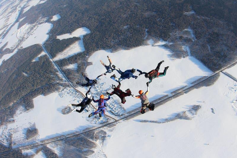 skydiving在冬天季节的形成 库存图片