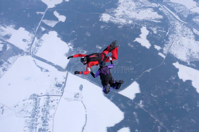 skydiving的冬天 两个跳伞运动员在天空训练 免版税库存照片