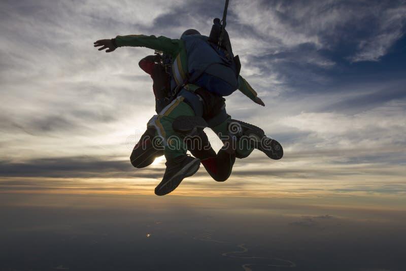 skydiving的照片 纵排 免版税图库摄影