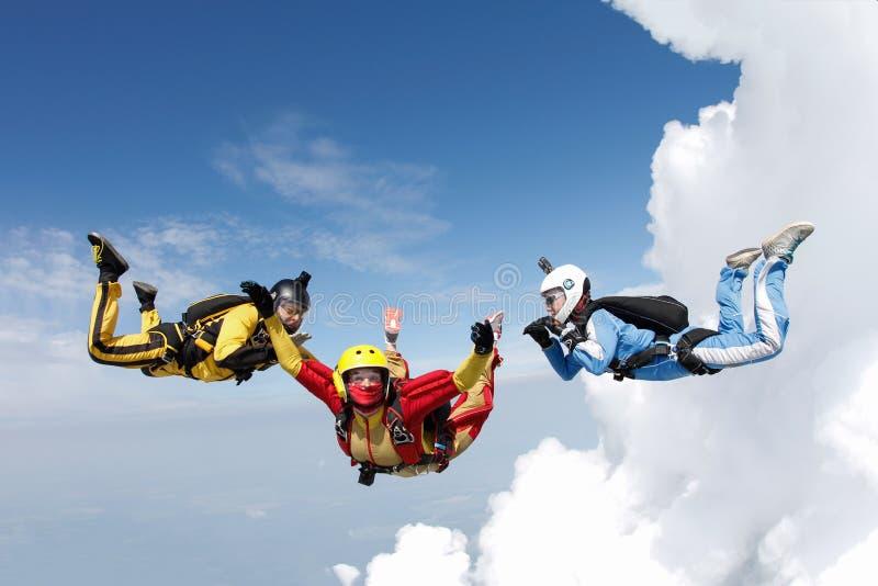skydiving Dos instructores están entrenando a un estudiante para volar fotos de archivo